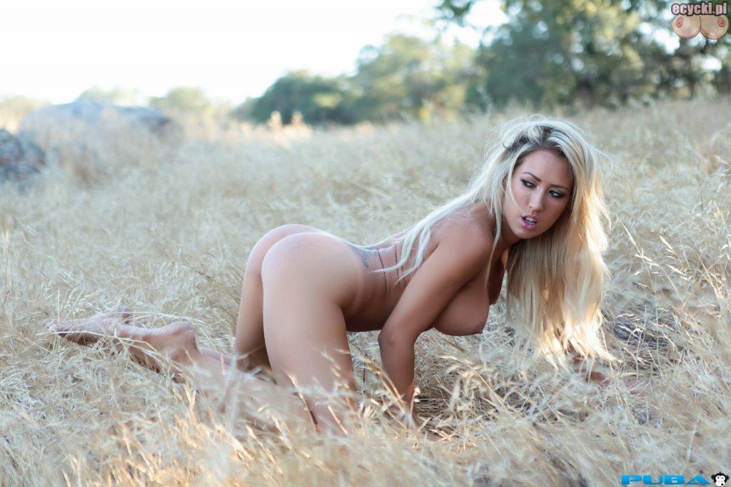 17. Capri Cavanni piekna zgrabna dupa gola dziewczyna nago duze nagie cycki w plenerze na lace na lonie natury nagie akty wypina pupe posladki tylek 1024x683 - Capri Cavanni piękna blondynka i duże cycki - naga sesja w plenerze: