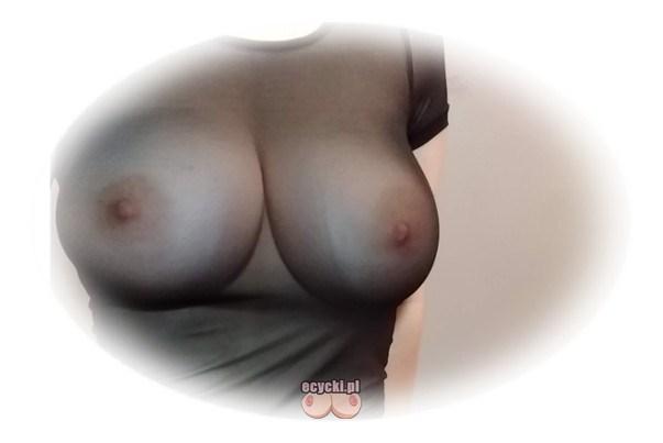 seksi biust - duze jedrne piersi w przeswitujacej czarnej koszulce bez stanika - sexy cycuszki bez biustonosza elegancka bluzka - ecycki blog